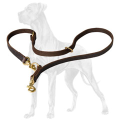 Multimode Leather Dog Lead