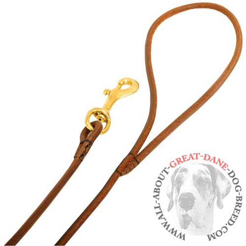 Leather Dog Leash with Handle