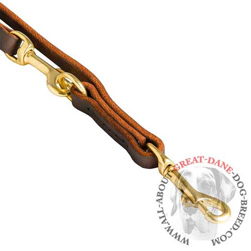 Leather Dog Leash with 2 Snap Hooks