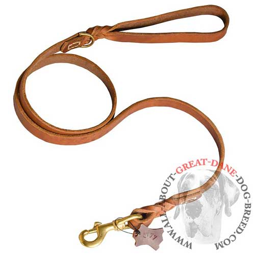 Training leather Great Dane leash for reliable service