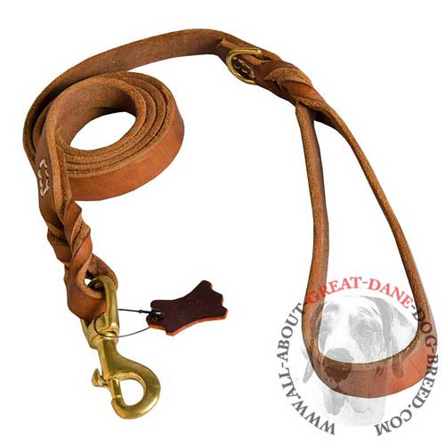 Great Dane leather leash with stainless fittings