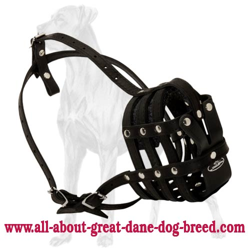 Newly Designed Strong Leather Cage Muzzle for Great Danes