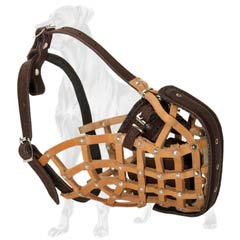 Extra Strong Great Dane Muzzle