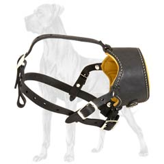 Unique Padded Leather Dog Muzzle