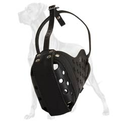 Great Dane Well-Fitting Durable Leather Muzzle