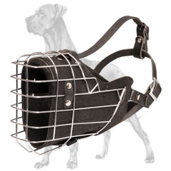 Riveted Basket Muzzle for Great Dane