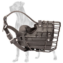 Great Dane Muzzle with Strong Buckle