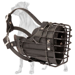 Black Rubber Covered Great Dane Muzzle
