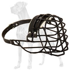 Modern Wire Cage Winter Muzzle for Dog Walking/Training