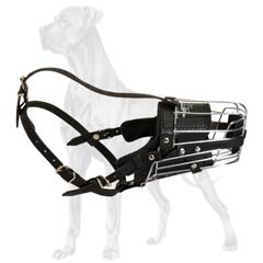Great Dane muzzle with padded leather part