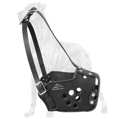 Multitask muzzle for Great Dane breed