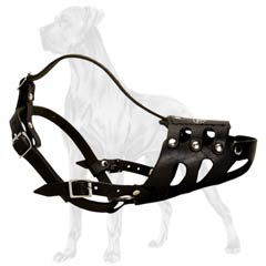 Easy adjustable Great Dane muzzle