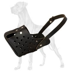Newly designed genuine leather muzzle for Great Dane