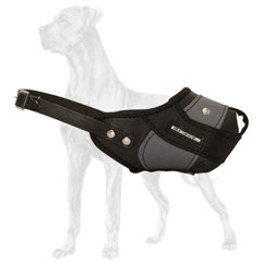 Great Dane muzzle of nylon and leather