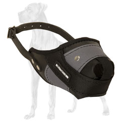 Nylon and leather Great Dane riveted for durability