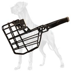 Wire Basket Canine Muzzle for Winter Walks