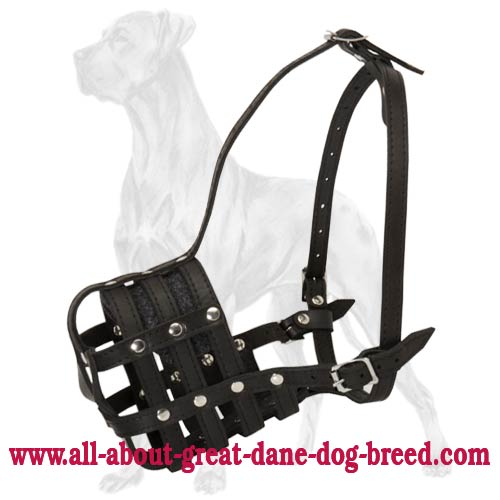 New All-Purpose Leather Mesh Muzzle For Great Dane Dog Breed