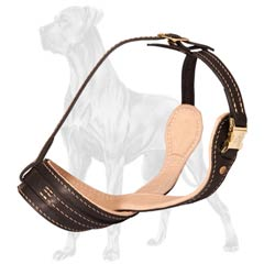 Safe Leather Muzzle for Great Dane