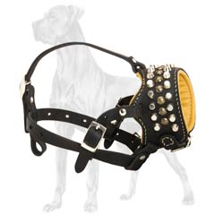 Worry-Free Leather Dog Muzzle With Studs