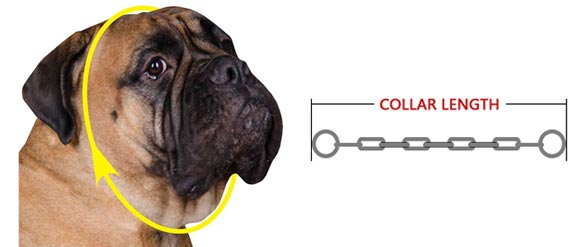 how to measure     collar
