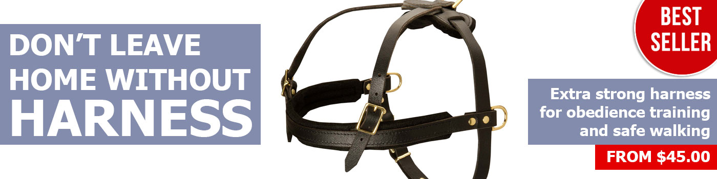 Best pulling dog harness